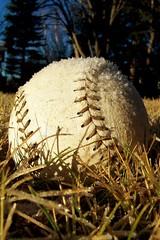 Baseball, anyone?