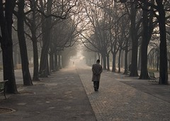 Promenade des Bastions, Genve (VeloManiac) Tags: city winter topf25 topv333 geneva quality topc50 2006