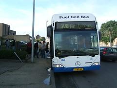 Cute bus