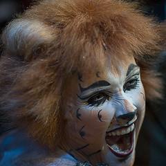 Cats the musical (Berbera van den Hoek) Tags: cats musical