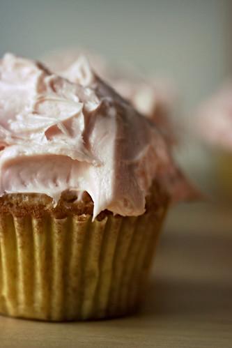 Cupcake, portrait