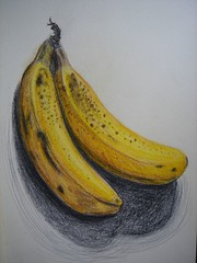 Bananas. Unsplit. (Digital Owl) Tags: moleskine yellow fruit sketch drawing bananas colourpencils sonydsct33 mge digitalowl digiowl