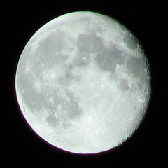 The moon seen from our back yard