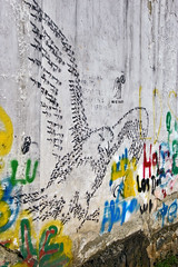 in eagle we trust (www.julkastro.co) Tags: world street light eye art texture luz colors composition contrast photography graffiti photo stencil paint flickr king foto photographer shot image protest run can spray professional master karate chan illegal contraste pro kung fu create fotografia tones journalism composicion konf topphotoblog julkastro eyeshow juliancastro wwwjulkastroco julkastrohotmailcom