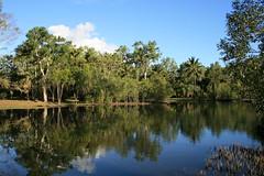 Centennary Lakes (Karen_1959) Tags: specnature apcomp apcompqld apcompqld2006 apcompqld2006october apcompqld2006octoberb