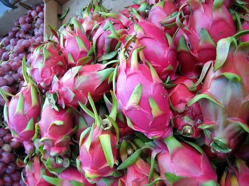 How to Grow Dragon Fruit