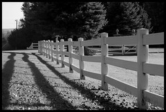 Northern Michigan Fall Black and White (Ledio (mostly away)) Tags: autumn blackandwhite bw fall nature colors d50 landscape colorful michigan fallcolors nikond50 harborsprings northernmichigan peisazh michiganfall piesazh
