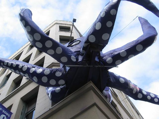 cuisina_octopus