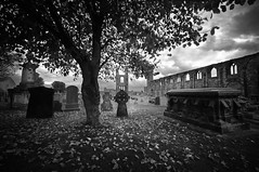 St. Andrews Cathedral (gms) Tags: blackandwhite bw graveyard scotland ruins cathedral fife spooky standrews