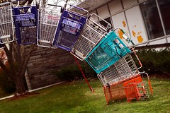 """""""Please Return Shopping Carts After Use"""" - by B Tal"""