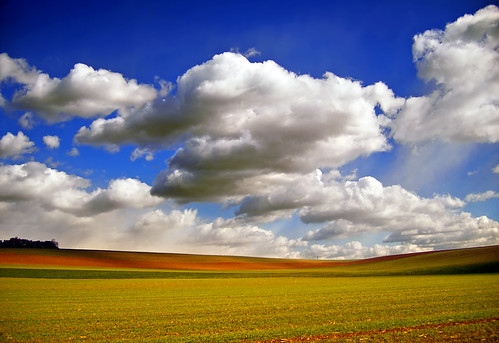 http://farm1.static.flickr.com/120/293413649_7d5981615f.jpg