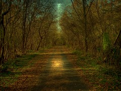 moonlight walk (LynchburgVirginia ) Tags: virginia bravo searchthebest path quality lynchburg walkway hdr pathway outstandingshots specland abigfave artlibre
