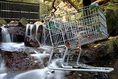 Shopping Carts and Unicorn Rivers (xarq) Tags: longexposure toronto river stclair shoppingcart moo ravine unicorn twoseconds minicards series0001img5358