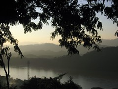 Through the trees on Phousy Hill - Luang Prabang - by Alexandra Moss