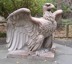 Penn Station Eagle (Cowtools) Tags: washingtondc creativecommons nationalzoo urbanmenagerie november192006visit