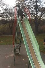 Shebie on the slide.