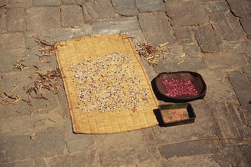 324S-Trek-Chillies