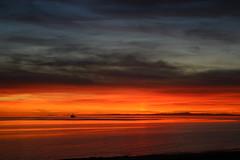 Puerto Penasco 2006 234 (sublimity_jim) Tags: bestnaturetnc06
