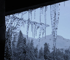 Icicles (petes_travels) Tags: trees winter snow france mountains ice les plan savoie icicles arcs peisey vallandry foresy