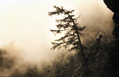 the rising mist at two edges of the world (manyfires) Tags: nature fog sepia oregon waterfall hiking atmosphere pentaxk1000 pacificnorthwest mccord columbiarivergorge elowah opnw xynw08people anpw