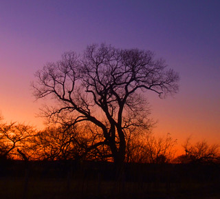 Washita Valley Sunset