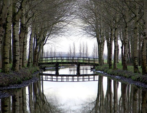 Alblasserwaard - The Netherlands