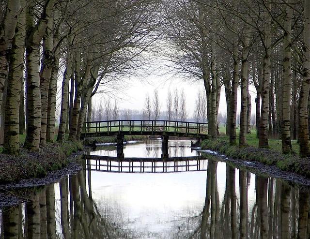 Alblasserwaard - The Netherlands