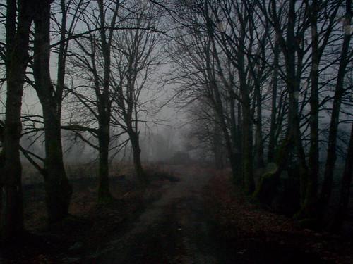 Haunted Lane