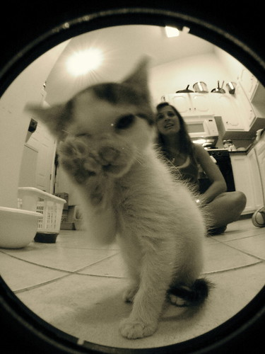 fisheye surprise.