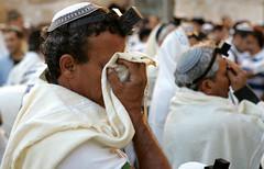"""Shema israel"" (ido1) Tags: israel hand jerusalem prayer pray westernwall shmaisrael top20jewish"