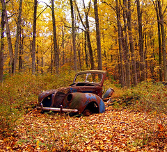 Ruins (Nicholas_T) Tags: autumn trees abandoned car rural forest newjersey rust ruins foliage creativecommons deciduous warrencounty oldmineroad delawarewatergapnationalrecreationarea 123nj