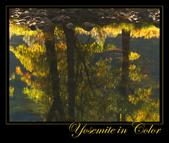 Yosemite in color (MistyDays / CB) Tags: color water scout national yosemite yosemitevalley mercedriver sierranevadamountains october20 charleneburge interestingness348 interestingness59 interestingness41 stormygirl parknational parkscaliforniareflectionsfall