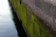 (Molly | Orangette) Tags: green water stone wall night evening moss walk friday ballardlocks october20