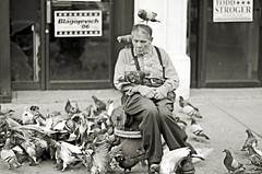 the pigeon man.