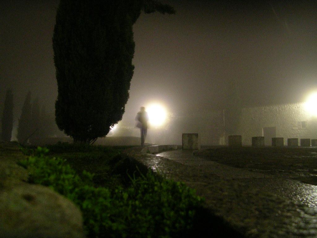 nieblas noche 012