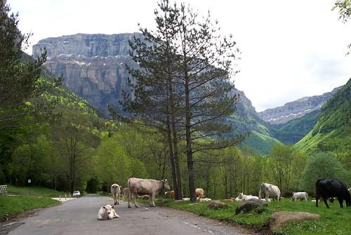 Huesca Foto 2