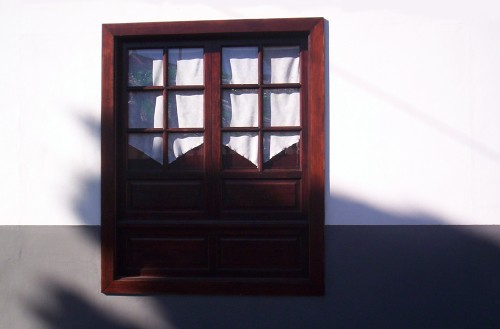 Shadowed Window