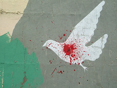 Oaxaca street art (johanna) Tags: streetart mexico blood stencil paint dove oaxaca