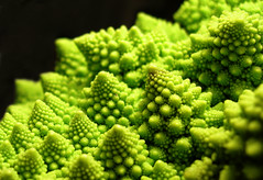 Broccolage (Ch@rTy) Tags: macro green close vivid broccoli vegetable charlie v fractal veg tyack charlietyackcom