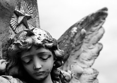 Starkangel (Anima Fotografie) Tags: ireland friedhof cemeteries loss cemetery graveyard angel death sadness sad cementerio cemitrio eternity cimetire cementerios cemitrios cimiteri cimetires steiner62 friedhoefe judgmentday54 challengeyouwinner cimiteris