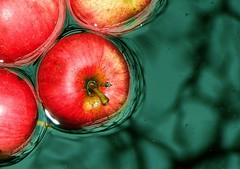 ...in drizzle... (ManonManon) Tags: red green apple water colors fruit wow spectacular interesting fantastic perfect quality awesome great tasty awsome lovely float drizzle compostion magicdonkey 1on1photooftheday abigfave ilikethisphoto artlibre anyhdranyphotoshop anyhdranyps anawesomeshot invitedphotosonlyahap