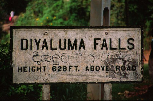 diyaluma (123)
