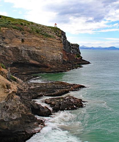 Otago Peninsula 4