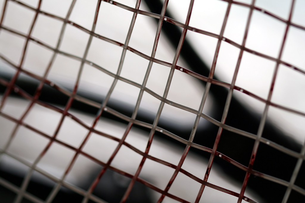 The World's Best Photos of racquet and string - Flickr Hive Mind