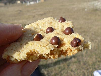 cookies Caussols