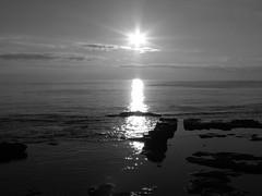 Fortuna (Stranju) Tags: sunset bw tramonto mare sole livorno biancoenero terrazzamascagni canonpowershots3is stranju withcanonican