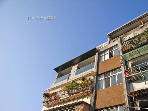台北市文山區:育英街