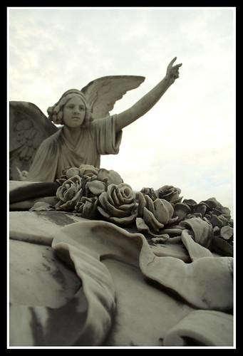 angel aviles