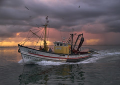 Portugal Primeira (Louis Dobson (formerly acampm1)) Tags: sea portugal faro dawn quality farol trawler rmj cotcpersonalfavorite thisisportugal specobject bonzag artlibre diamondclassphotographer