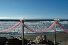 264736136 31f7334765 m Beach wedding, Destination wedding
